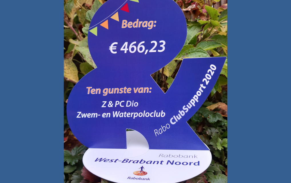 https://dioweb.nl/wp-content/uploads/2020/10/RaboclubSupport-1018x640.png